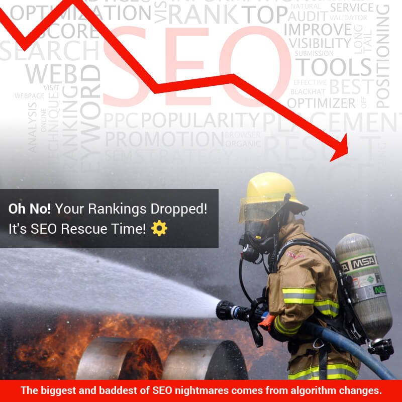 Oh No! Your Rankings Dropped! It's SEO Rescue Time!