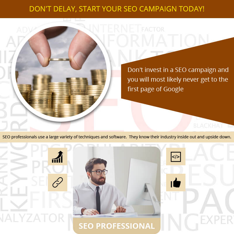 Don't Delay, Start Your SEO Campaign Today!